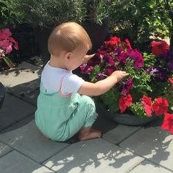 zo verleidelijk om een bloem te plukken