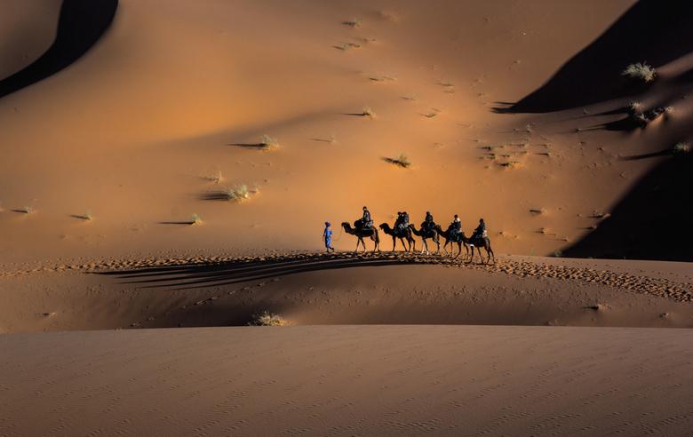 Op weg - Het is alsof deze karavaan alleen op de wereld is, onderweg naar een plaats om te overnachten.