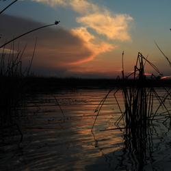 Sunset Okavango