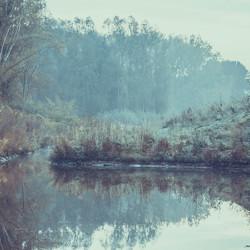 Vroeg op pad, een vleugje mist en water van de schelde ... Feeérieke sfeer