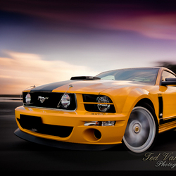 Mustang Saleen Pernelli Jones