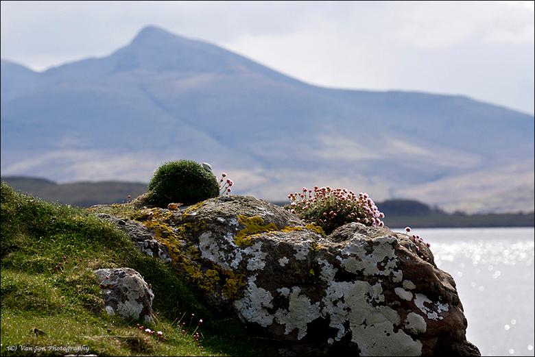 Mull - Typische aanblik van de Schotse kust