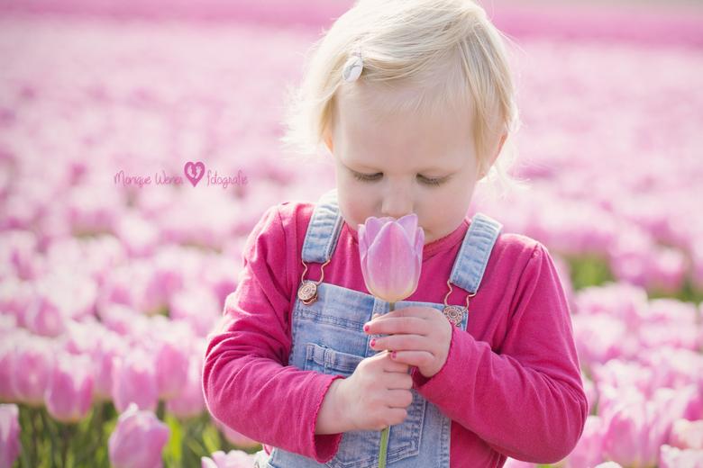 De geur van lente -