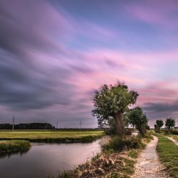 Storm in de polder