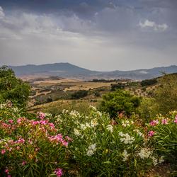 De heuvels van Andalusië