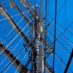 Sail 2010 Aphrodite Mast