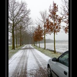 Winter in Markelo-1