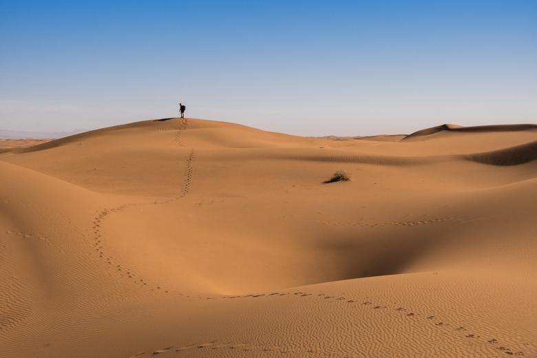 Beat the Sand - Mijn vader was net naar boven gelopen toen ik zag dat hij een mooi spoor achter had gelaten. Het leek me leuk zijn spoor als lijn door