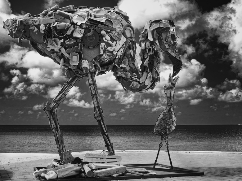 AfvalFlamingo - Maria Koijck bouwde een reusachtige flamingo van plastic afval op het strand van Bonaire. Samen met de lokale bevolking, de 4Green Fou