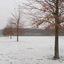 Sneeuw in België (1)