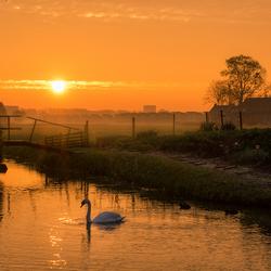 Sunrise atmosphere
