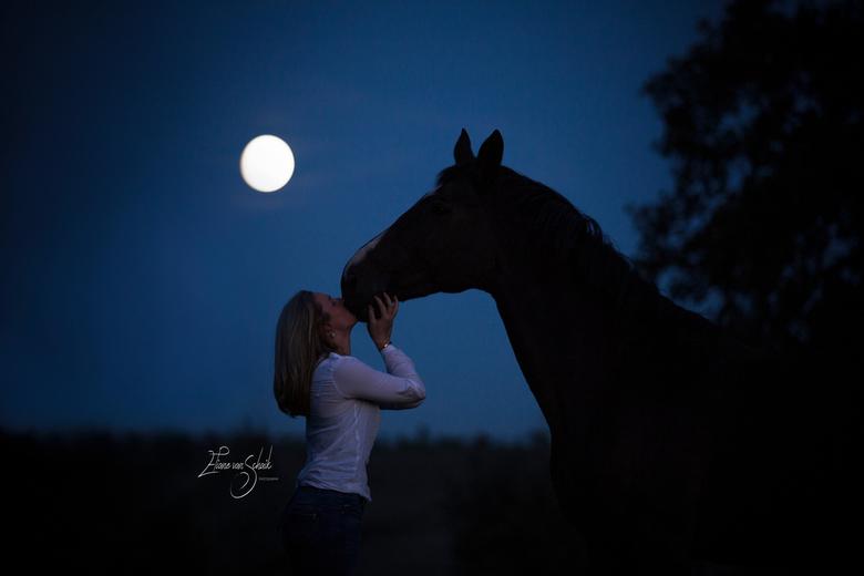moon horse - wauw.... na een zonsondergangshoot zagen we de maan aan de andere kant van het veld... we hebben hier meteen een gave foto van gemaakt !