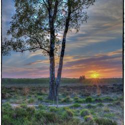 Zonsondergang op landgoed Den Treek...