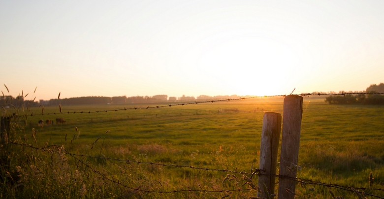 Zonnige Lente Ochtend  - Vanwege het recentelijke warme lente weer besloten om vanochtend eens met de fiets op stap te gaan om een mooie zonsopgang va