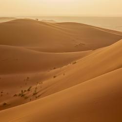 Tegenlicht zandduinen Erg Chebbi