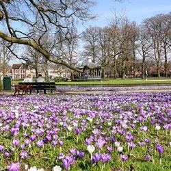 Oranjepark Apeldoorn.
