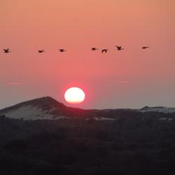 Zonsondergang, ijmuiden