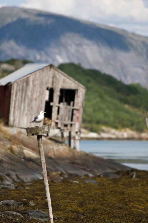 Noors natuurschoon - Foto gemaakt tijdens onze rit op de RV17 naar het noorden van Noorwegen