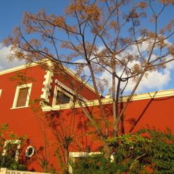 Rood huis in de avondzon, El Portet