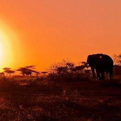 zonsopgang zuid-afrika