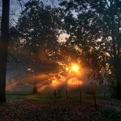 zonnige herfstmorgen in Leut...