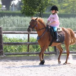 Lekker paardrijden