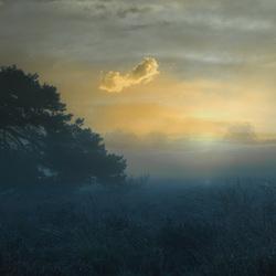 ochtendgloren wolfhezerheide