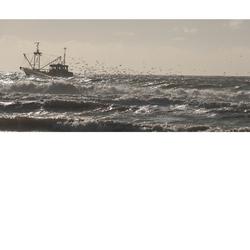 Vissersboot Texel
