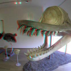 NHM Museum Rotterdam 3D GoPro