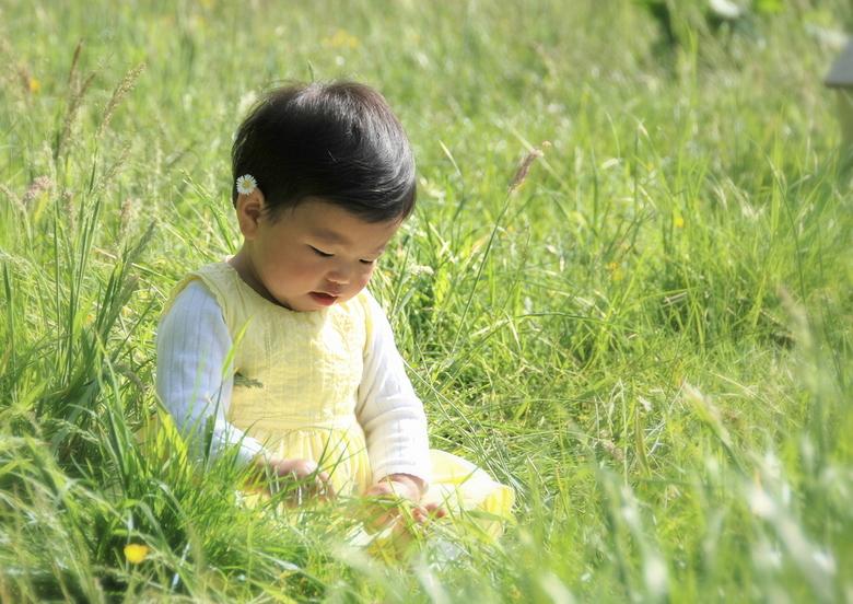 Lin tussen de boterbloemen -  kleindochter Lin tussen de boterbloemen
