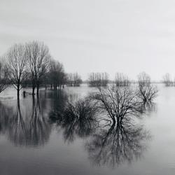 hoogwater Huissen