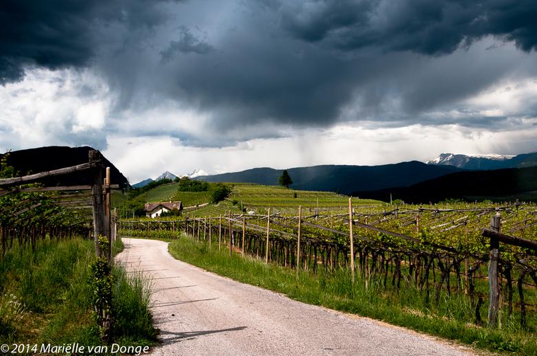 De bui voorblijven - Afgelopen mei fietsvakantie in Italië: van Passo di Resia naar Gardameer. Hele mooie tocht. Geen grote afstanden per dag. Bijna a