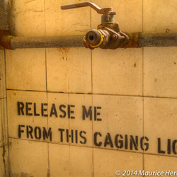 Release me from this caging light