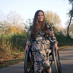 rolstoel model