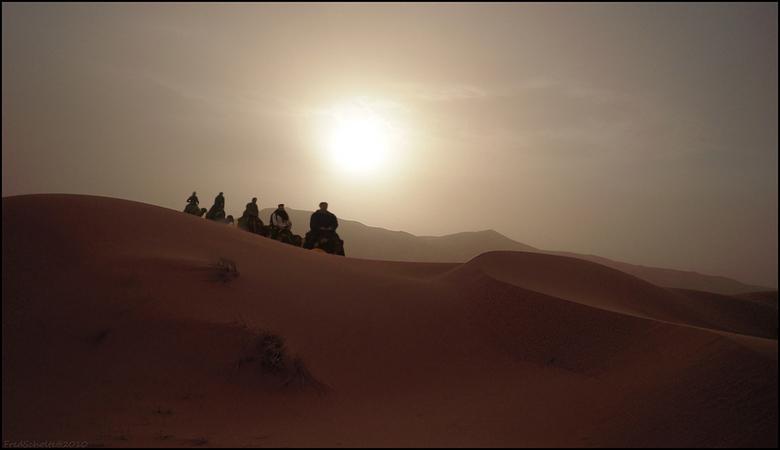Coproductie - Een knappe montage van &#039;henkvanm13&#039; met gebruikmaking van enkele van mijn Sahara-opnames.<br /> <br /> Resultaat: de foto di