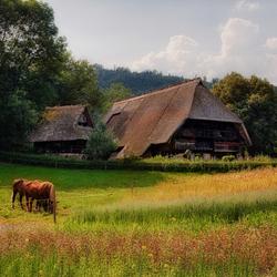 Boerderij Schwarzwald