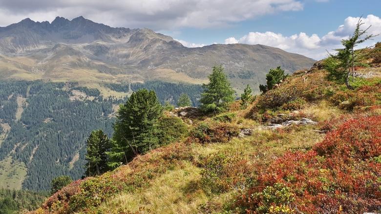 20180905_1226577 - De Alpen boven Lienz. Leefgebied van de alpenmaus.