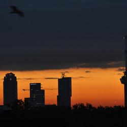 Skyline van Rotterdam met zonsopkomst