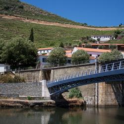 Portgebied langs de Douro Portugal