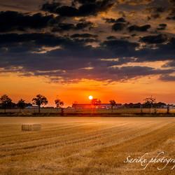 oogsttijd in Zuid-Limburg