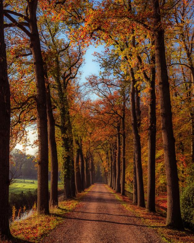 Herfst -