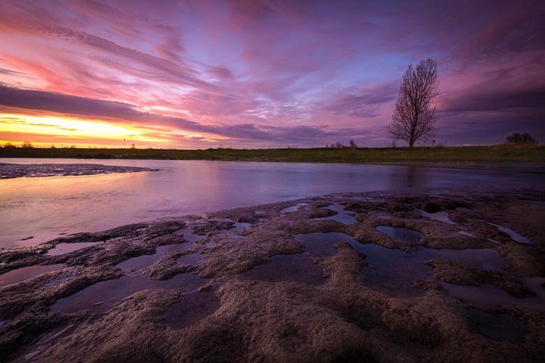 "Mud - <span style=""font-weight:bold;"">Mud.</span><br /> &#039;Mud&#039; is gefotografeerd in een natuurgebied nabij Lexmond (Zuid-Holland, Nederland)"