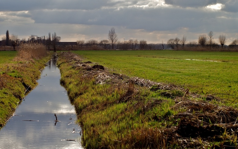 Polderlandschap in de redelijk felle zon -