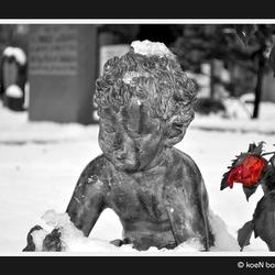 Begraafplaats in Alkmaar