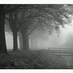 Brabants Landschap Z/W