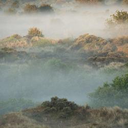 De Westhoek