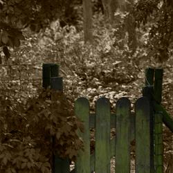 Groen hek