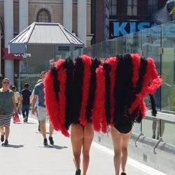 Las Vegas feathers