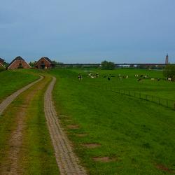 Hollandslandschap