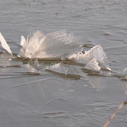scherven ijs
